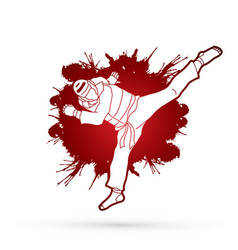 Taekwondo jump kick action with guard equipment vector