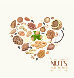 the isolated heart of nuts and seeds vector image vector image