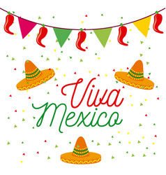 viva mexico poster colored hats and pennant vector image