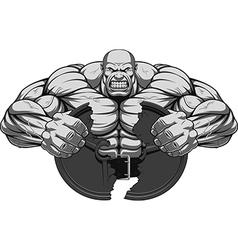 Man of iron vector