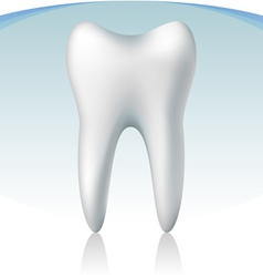 3d tooth vector