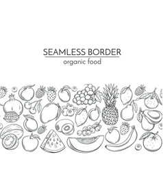 Seamless borders with hand drawn fruits vector