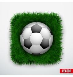 Icon football ball in green grass vector image vector image