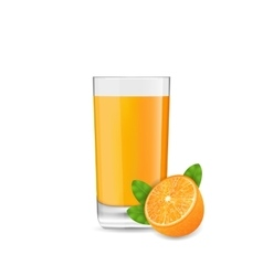 Orange Cool Cocktail and Half of Fruit vector image