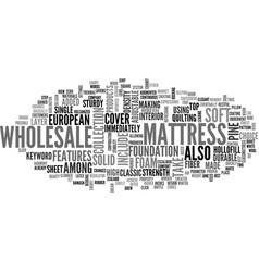 wholesale mattress text word cloud concept vector image