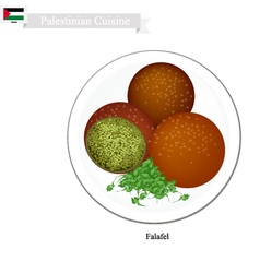 Falafel or palestinian deep fried ball of chickpea vector