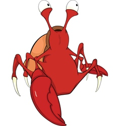 Red crab cartoon vector image vector image