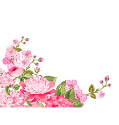sprng floral background vector image