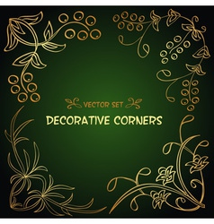 Gold festive floral corners collection vector image