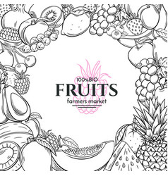 Poster template with hand drawn fruits for vector