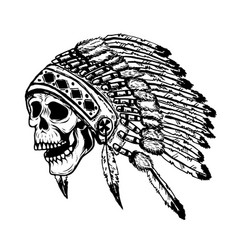 skull in native american indian chief headdress vector image