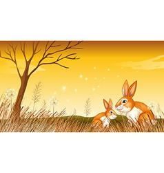 Two bunnies near the grasses vector