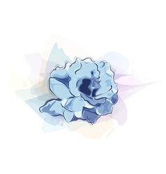 Watercolor flower vector
