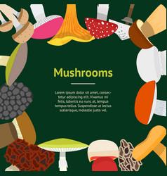cartoon mushrooms banner card vector image vector image