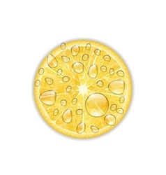 Photo realistic slice of lemon vector