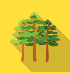 pine icon in flat style for web vector image