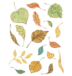 Set of autumnal leaves vector