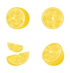 Set of fruit lemons isolated vector