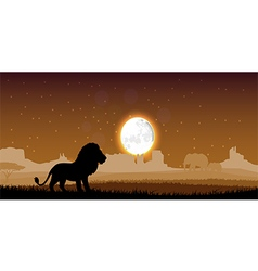 Lion in the evening vector