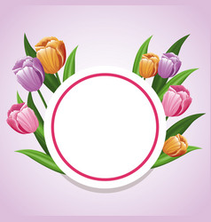 Card tulip flower decoration template vector