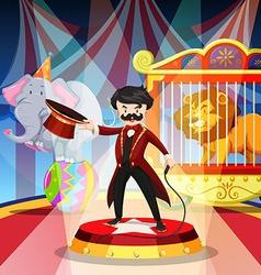 Ring master and animal show vector