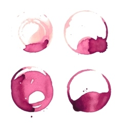 Wine stain cup spots vector image