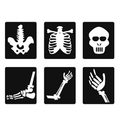 X ray icons vector