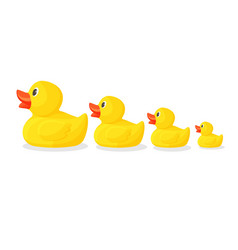adorable rubber ducks in row from big to small vector image