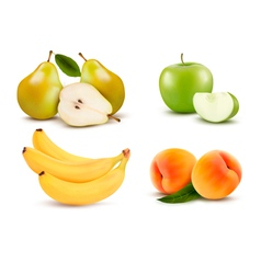 Big group of different fruit vector image