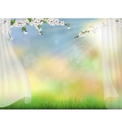 spring background with curtain vector image
