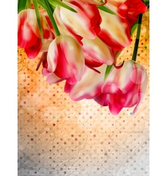 Orange frame with flowers eps 10 vector