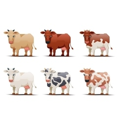 Cows of different colors on white background vector