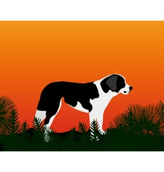 Dog gazing into the distance vector