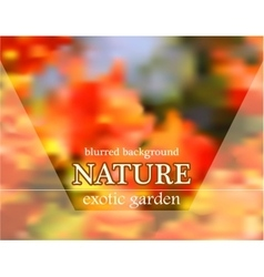 Blurred floral background with garden design vector image vector image