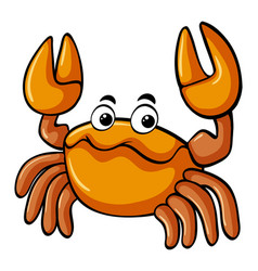 Cute crab on white background vector