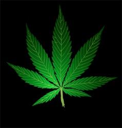 Pot Leaf vector image vector image
