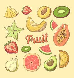 Fruit pieces hand drawn doodle with papaya vector