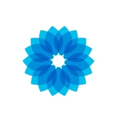 Blue circular pattern on vector image