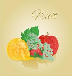 Fruit like woodcut apple pear grapes strawberries vector image