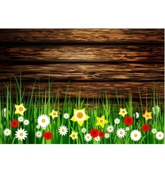 Green grass spring background vector