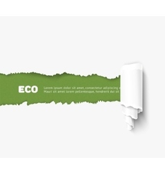 torn paper with roll eco vector image