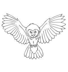 hand drawn owl vector image vector image
