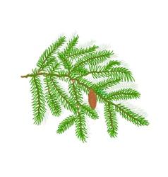 Spruce Christmas tree symbol celebration vector image