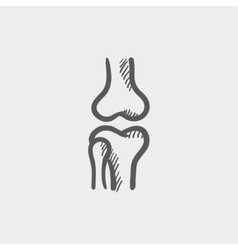 Knee joint sketch icon vector