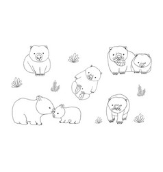 Set of cute young wombat in various poses vector