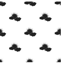Cloudy weather icon in black style isolated on vector