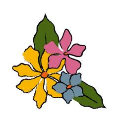 beautiful decorative flowers vector image vector image