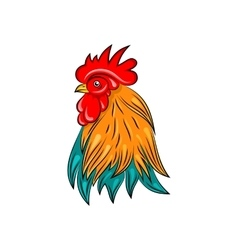 Head of rooster hand drawn style colorful cock vector
