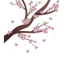 Sakura Tree vector image vector image
