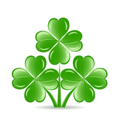 three shamrock vector image vector image